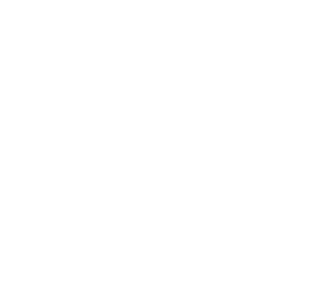 The Designery Logo White